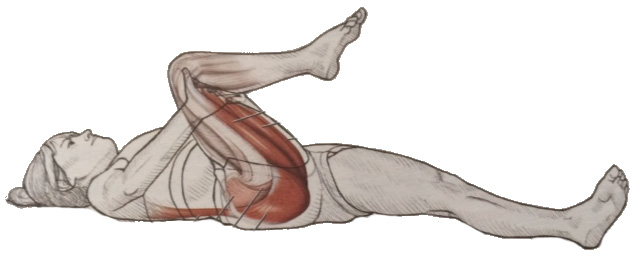 hip and back extensor stretch.jpg