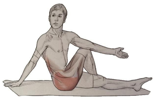 hip rotator stretch.jpg